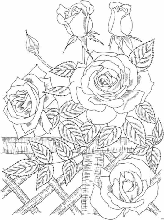 Imagenes De Navidad Para Imprimir Y Colorear Dibujos Infantiles Para